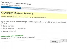 OFI Online DSE Assessment Tool – Sample Screen
