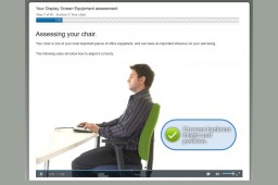 DSE Online Assessment sample screen showing Chair